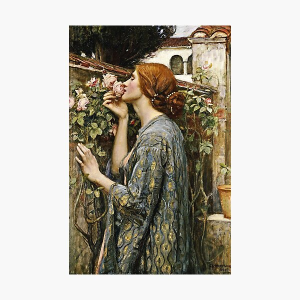 John William Waterhouse - The Soul Of The Rose Photographic Print
