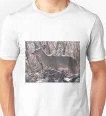 Broadside T-Shirt