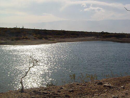 lake by Juana Luján