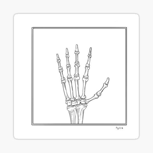 Hand Study - Fig 1-a Sticker