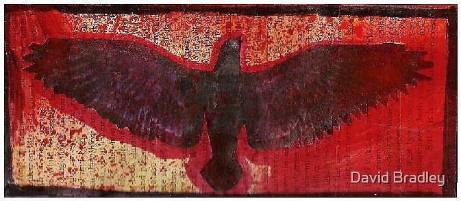 Crow boxx by Dave Bradley