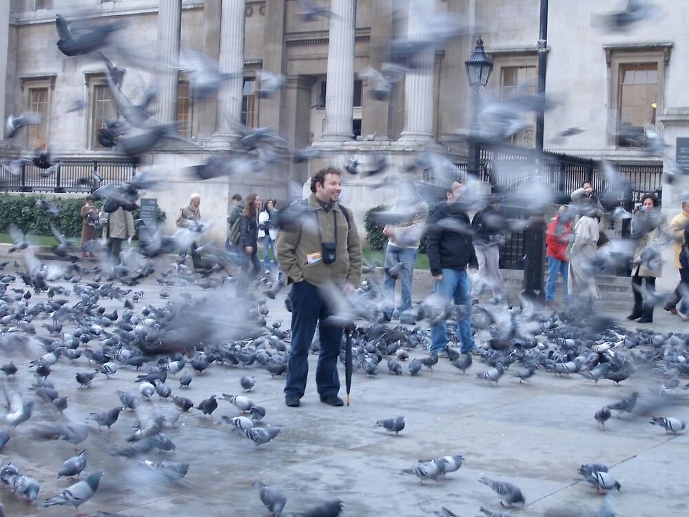 Pigeon Storm by Carly Michael