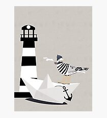 Fisher seagull Photographic Print