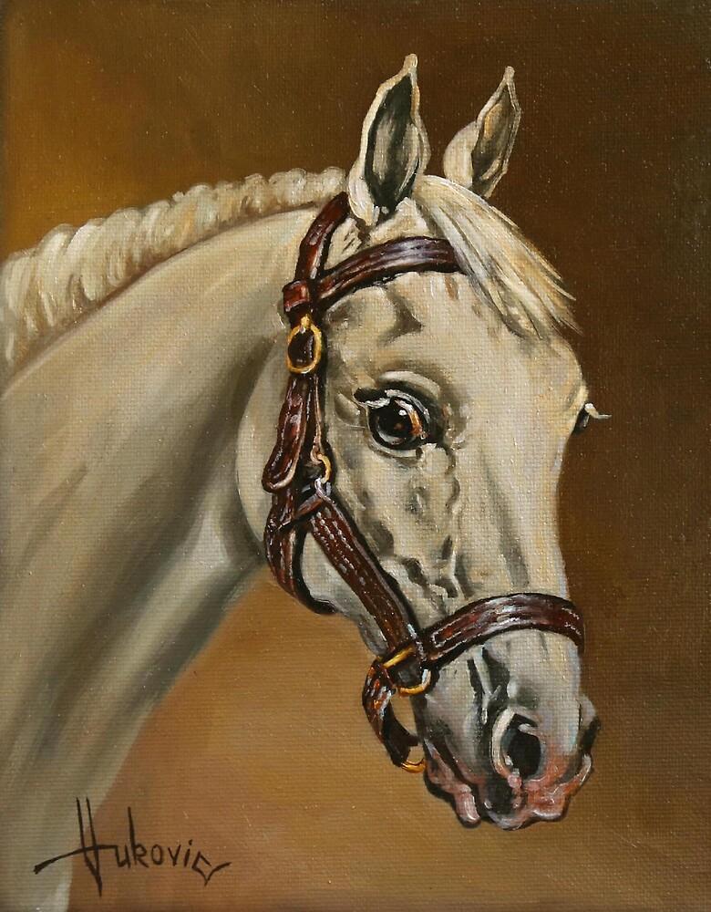 White Horse - portrait by dusanvukovic