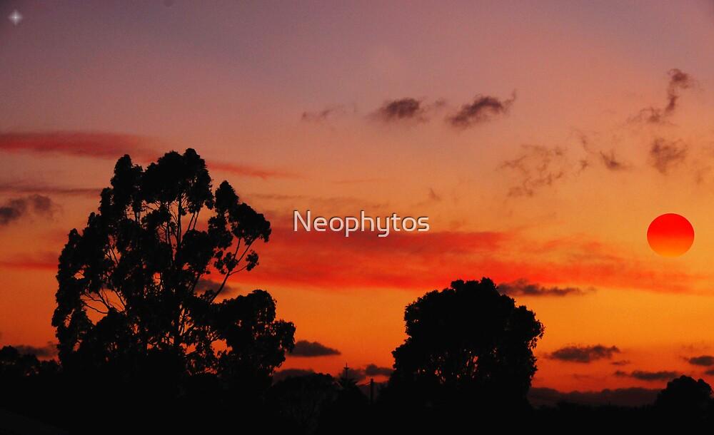 Luminous Landscape by Neophytos