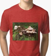 Fungi Tri-blend T-Shirt