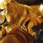 Best Friends by © Loree McComb