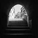 Measured Steps by Andy Freer