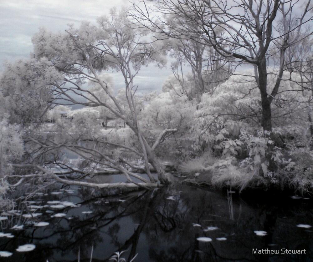 Dark Lake by Matthew Stewart