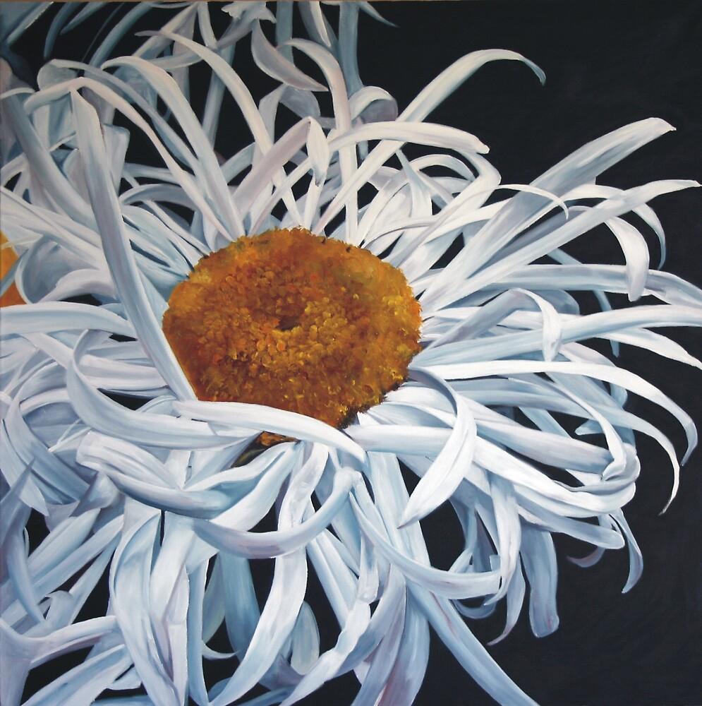 Hairy Daisy by Melissa Mailer-Yates