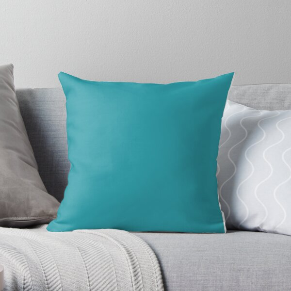 Teal / Light Sea Green Solid Color Throw Pillow