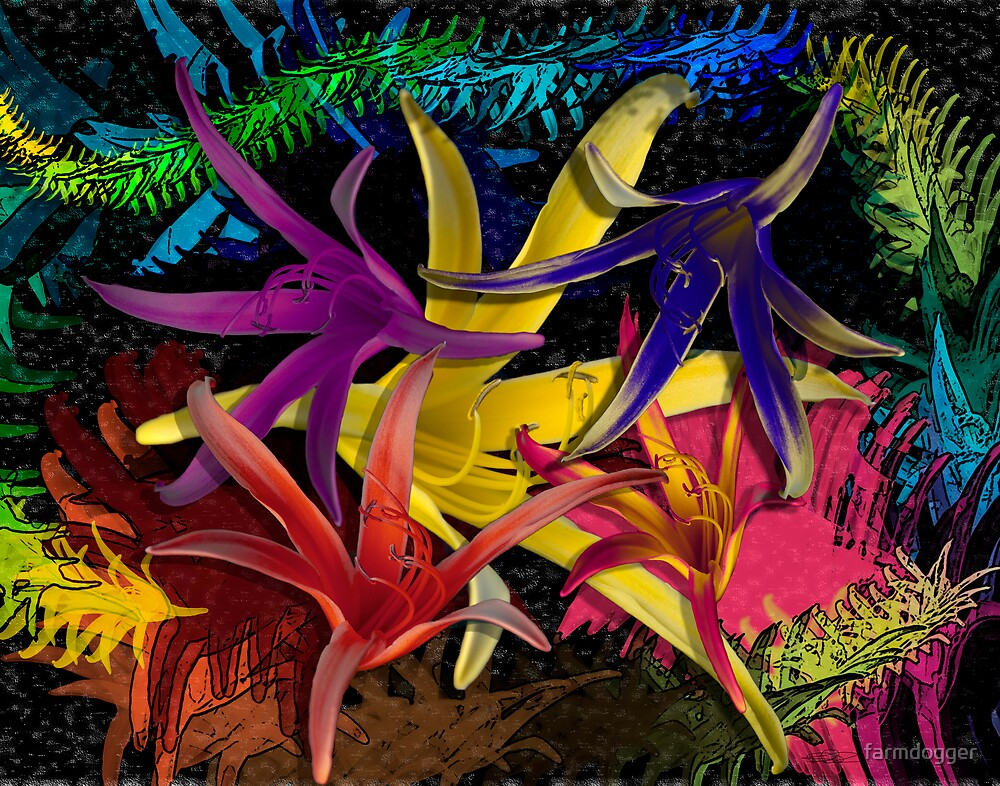 Lilli Colors by farmdogger