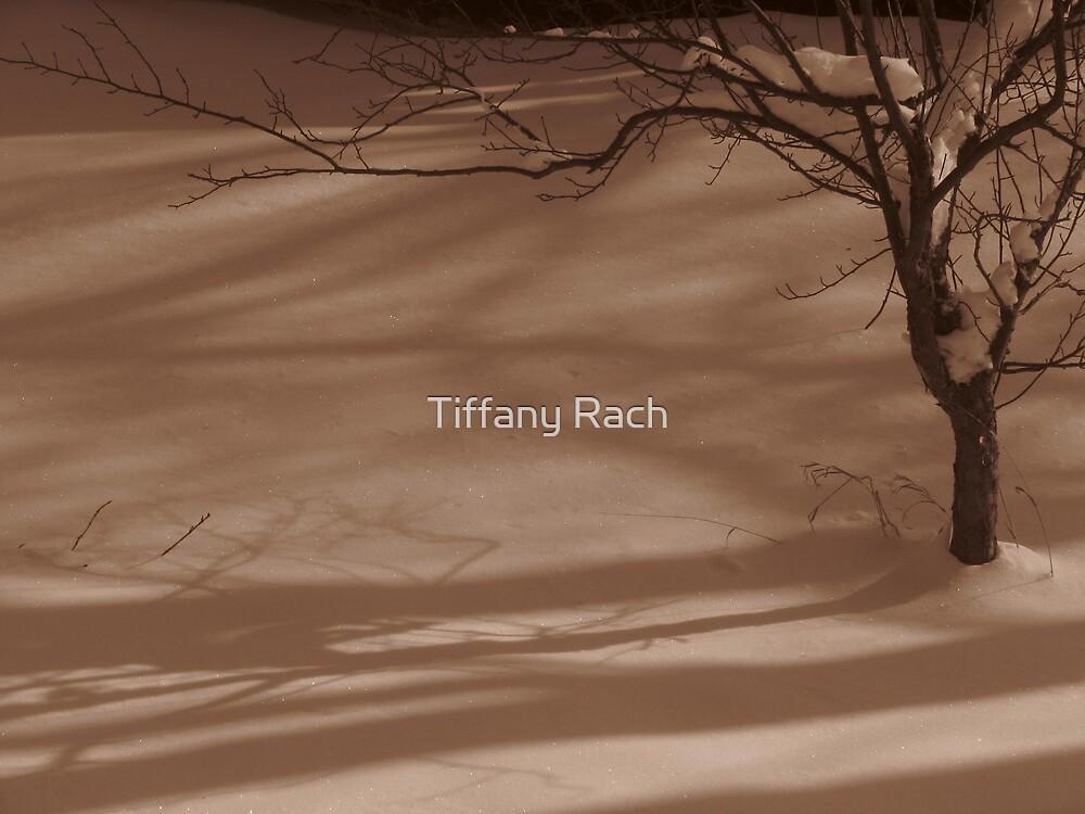 Tree by Tiffany Rach
