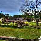 THE OLD WAGON by TJ Baccari Photography
