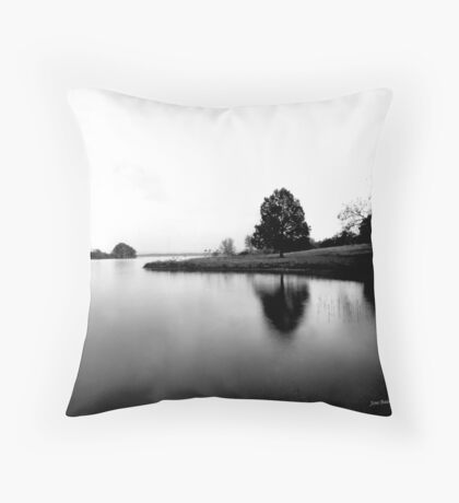 Quite Reflections Throw Pillow