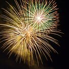 fireworks - 4 by srphotos