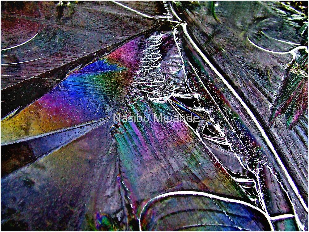 I C a Rainbow by Nasibu Mwande