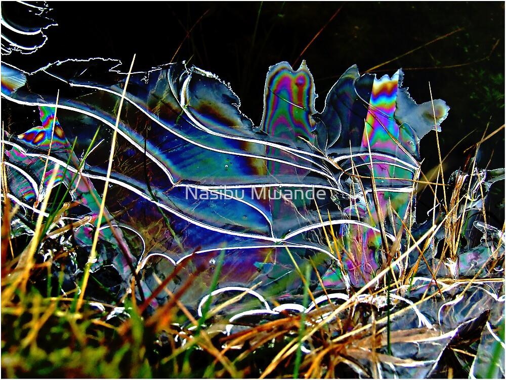 Frozen rainbow by Nasibu Mwande