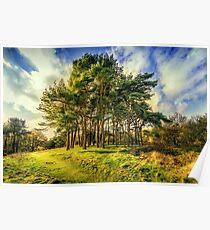 Clent Hills Blue Sky Poster
