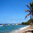 Bathsheba, Barbados  by Kurt  Van Wagner