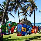 Colors of Barbados by Kurt  Van Wagner