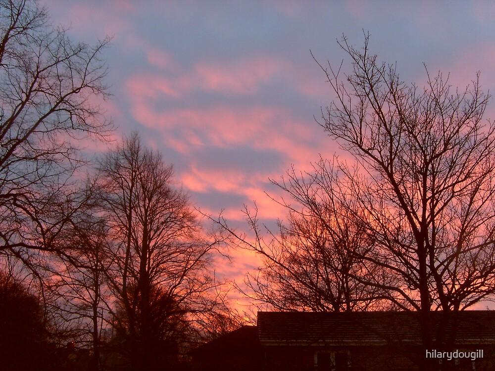Sky on fire by hilarydougill