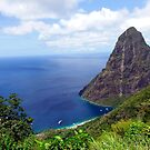 Stairway to Heaven view, Pitons, St. Lucia by Kurt  Van Wagner