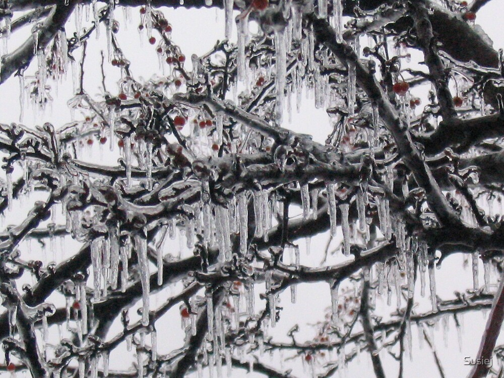 Ice and snow in the midwest by Susiej