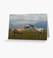 Playful Greeting Card