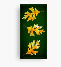 Forest Oak Leaves Canvas Print