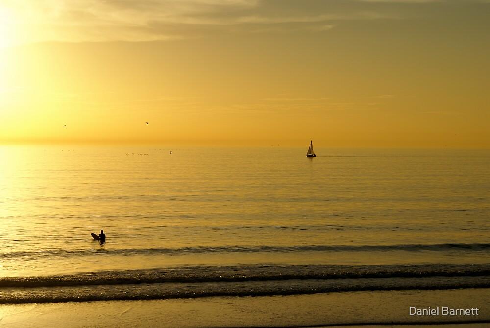 Venice Beach- It's a way of life by Daniel Barnett
