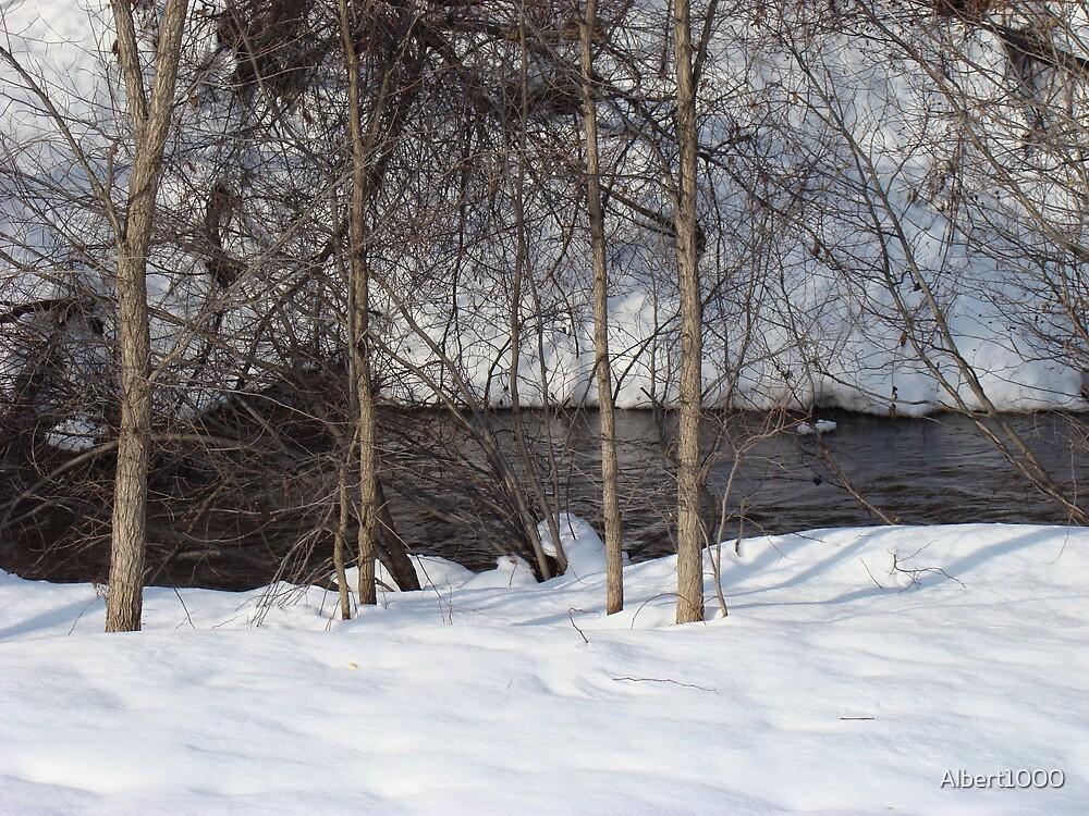Winter brook #1 by Albert1000