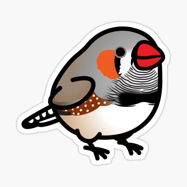 Chubby Zebra Finch Sticker