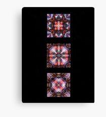 Kaleidoscopes on Black Canvas Print