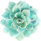 Blue-Green Succulent Watercolors Illustration by artonwear