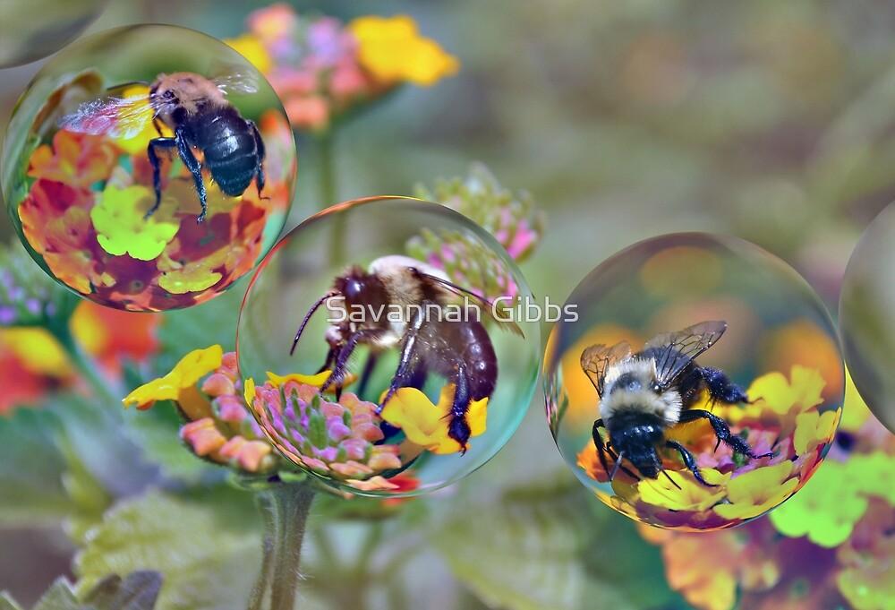 Bumble Bees by Savannah Gibbs