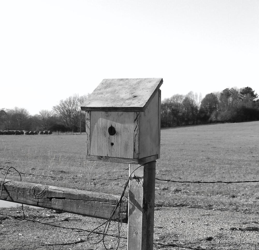 Birdhouse by Kimberly Bain