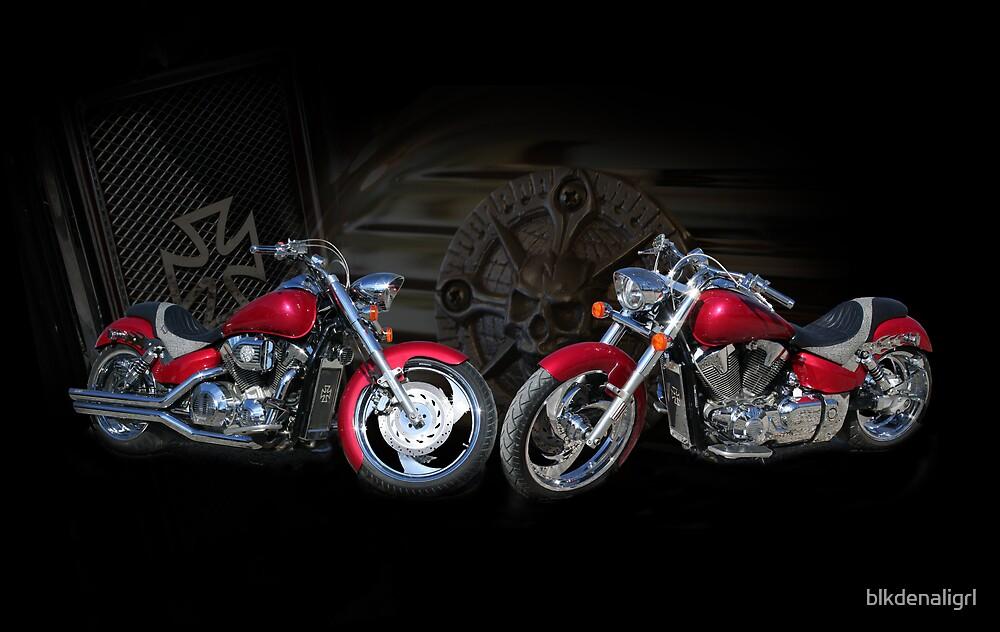 Custom Motorcycle Portrait by blkdenaligrl