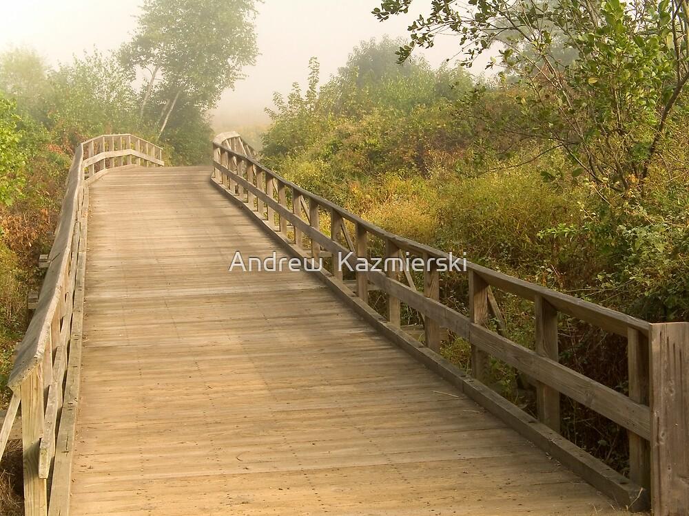 Wooden Bridge by andykazie