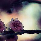 In The Darkest Hour by Evita