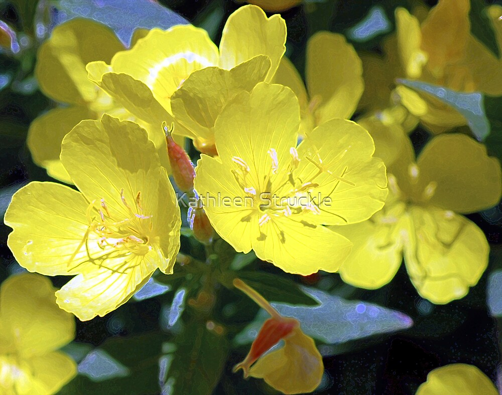 Delicate Yellow by Kathleen Struckle