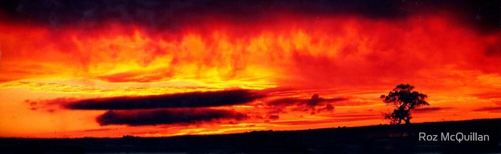 Sky on fire by Roz McQuillan