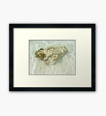 Ocean Rock Framed Print