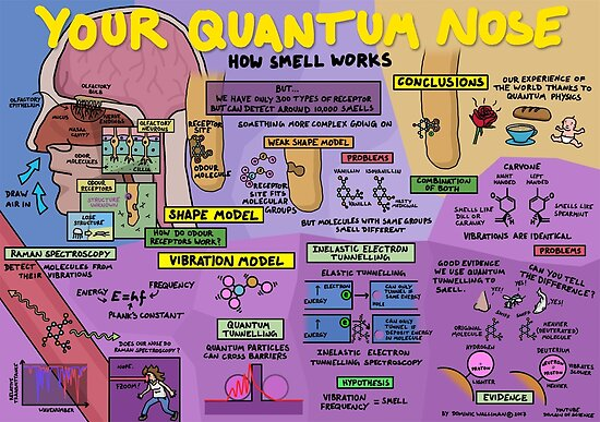Quot Your Quantum Nose How Smell Works Quot Posters By
