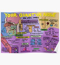 Your Quantum Nose: How Smell Works Poster