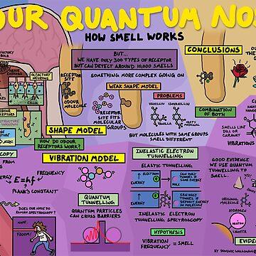 Deine Quantum-Nase: Wie Smell funktioniert von DominicWalliman