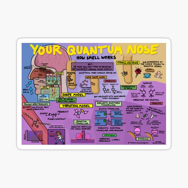 Your Quantum Nose: How Smell Works Sticker