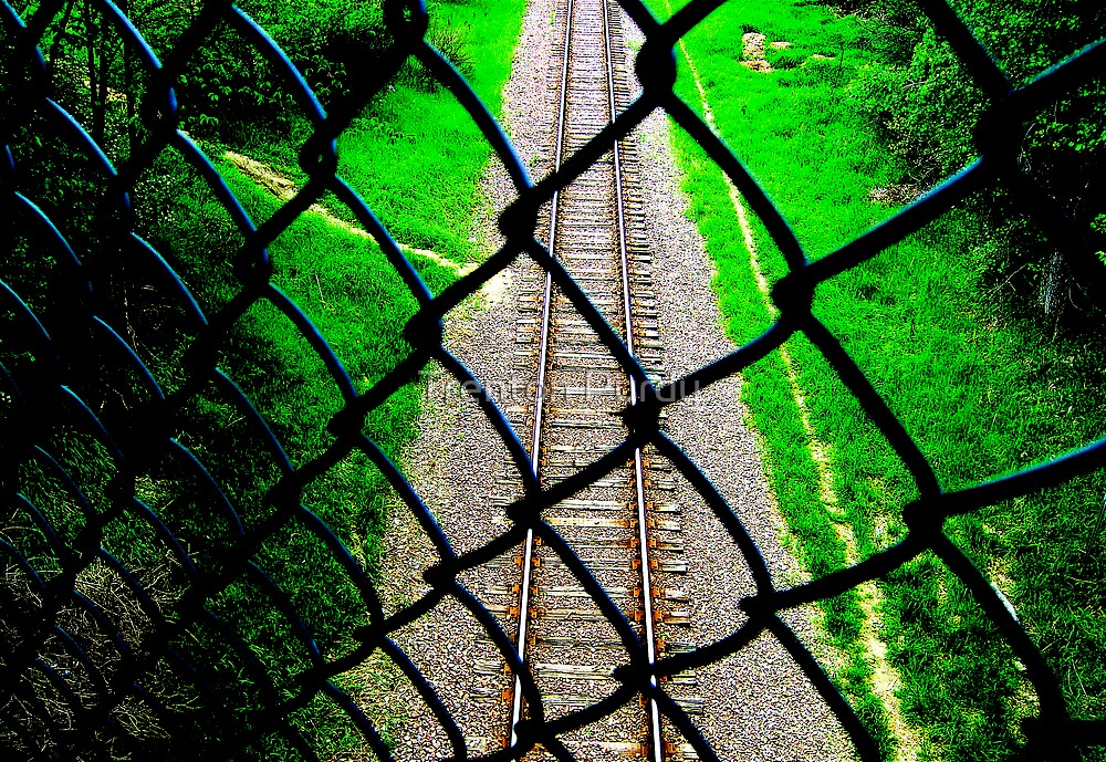Fence and Train Tracks by Trenton Purdy
