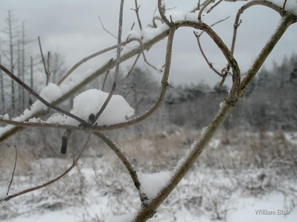 Winter Strikes by William Blair