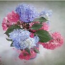 Endless Summer Hydrangeas and Roses Still Life by LouiseK